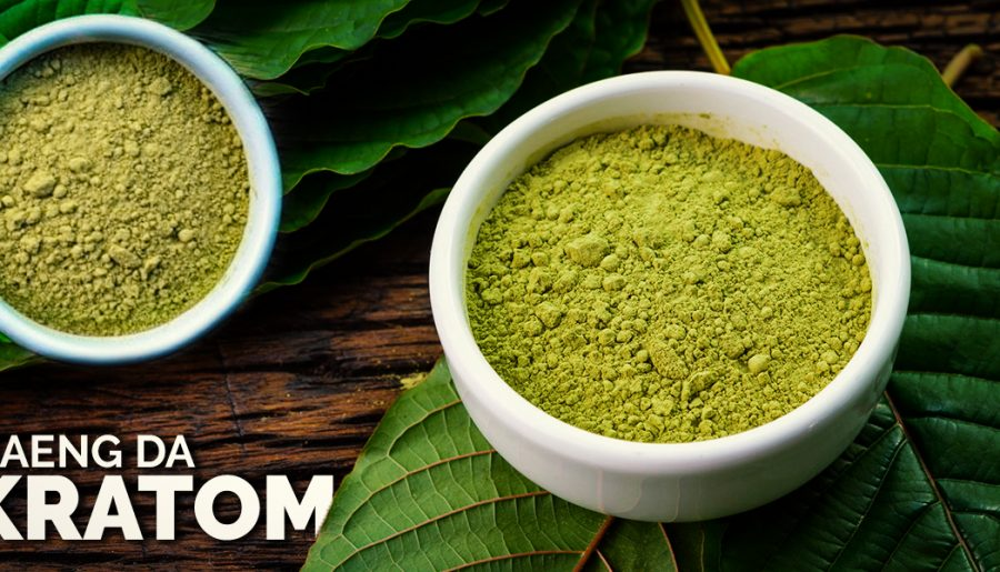 Maeng Da Kratom 101: Everything You Need To Know